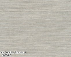 AS_Creation_Titanium_2_36006-2_k.jpg