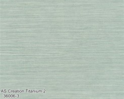 AS_Creation_Titanium_2_36006-3_k.jpg