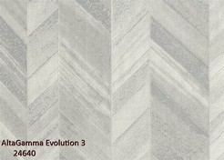 AltaGamma_Evolution_3_24640_k.jpg