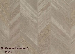 AltaGamma_Evolution_3_24645_k.jpg
