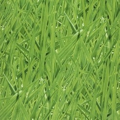 Covers_Elements_Grassy_Meadow_grass27_k.jpg