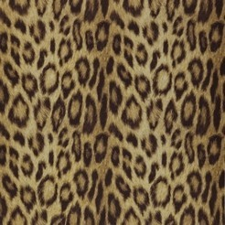 Covers_Textures_Panthera_gold08_k.jpg
