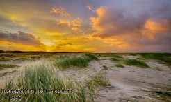 Noordwand_Dutch_Landscapes_0356_k.jpg