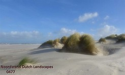 Noordwand_Dutch_Landscapes_0477_k.jpg