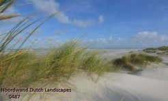 Noordwand_Dutch_Landscapes_0487_k.jpg