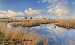 Noordwand_Dutch_Landscapes_0677_k.jpg
