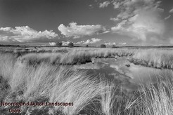 Noordwand_Dutch_Landscapes_0693_k.jpg