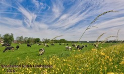 Noordwand_Dutch_Landscapes_1016_k.jpg