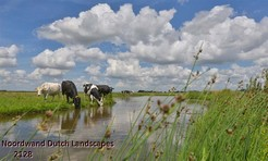 Noordwand_Dutch_Landscapes_2128_k.jpg