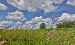 Noordwand_Dutch_Landscapes_2166_k.jpg