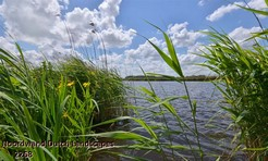 Noordwand_Dutch_Landscapes_2268_k.jpg