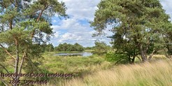 Noordwand_Dutch_Landscapes_2864_Dommeld_k.jpg