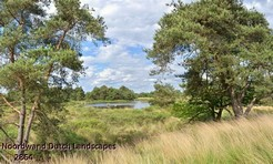 Noordwand_Dutch_Landscapes_2864_k.jpg