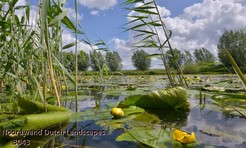 Noordwand_Dutch_Landscapes_3043_k.jpg