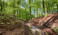 Noordwand_Dutch_Landscapes_3506_k.jpg