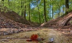 Noordwand_Dutch_Landscapes_3536_k.jpg
