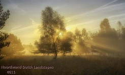 Noordwand_Dutch_Landscapes_4611_k.jpg