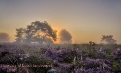 Noordwand_Dutch_Landscapes_8648_k.jpg