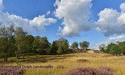 Noordwand_Dutch_Landscapes_9903_k.jpg